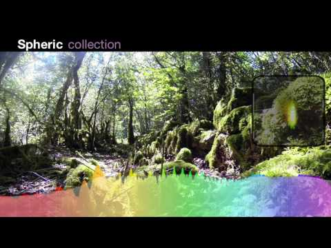 Forest 2 | Ambisonics Forest Sound Effects Library