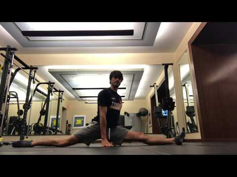 Handstands, Training, and Mobility