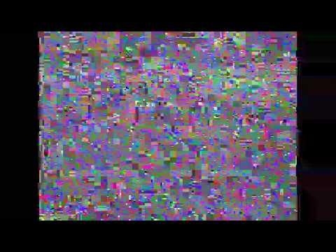 PAL VHS played back on NTSC Format