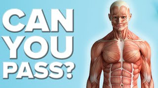 Can You Pass A Basic Anatomy Test?