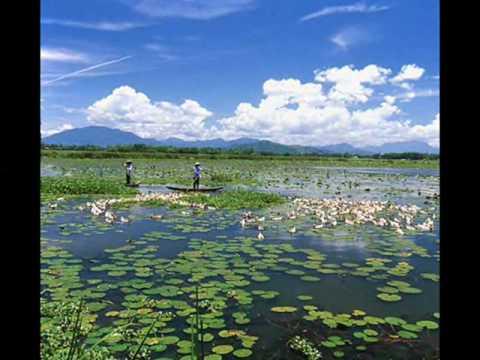Trekking Travel - Vietnam tours, Halong bay 2 days tours, Sapa trekking tours