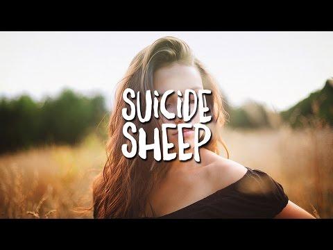 Fatboy Slim - Praise You (Maribou State Remix)