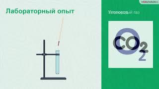 Download Видеоурок «Качественные реакции в химии» Video