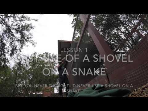 Best Use of A Shovel On A Snake 02