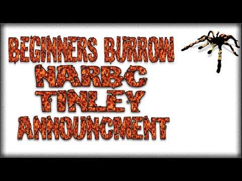 Tinley Announcement - Beginners Burrow