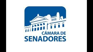 Sesión de la Cámara de Senadores | 03/06/2020 | República Oriental del Uruguay