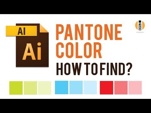 how to find pantone color in illustrator  | i teach vids