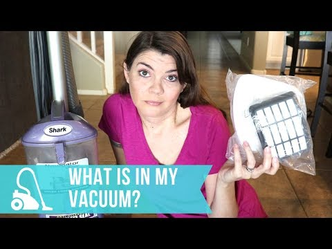 HOW TO CLEAN YOUR VACUUM SPEED CLEANING ROUTINE   CLEAN WITH ME