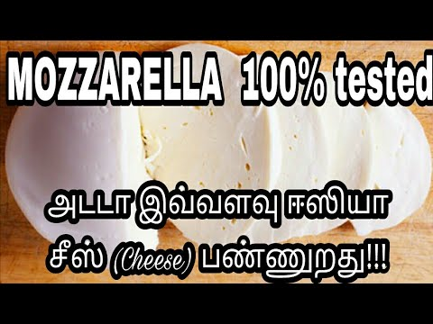 Mozzarella/ How to make cheese at home/Cheese Recipe In tamil/Homemade mozzarella/ Mozzarella recipe