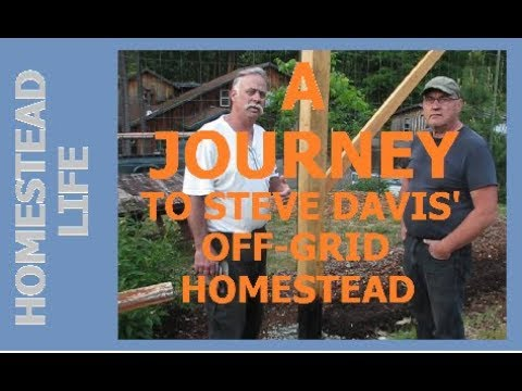 HOMESTEAD LIFE - A Journey to Steve Davis' Off Grid Homestead