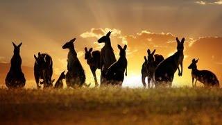Tourism Destination: Australia