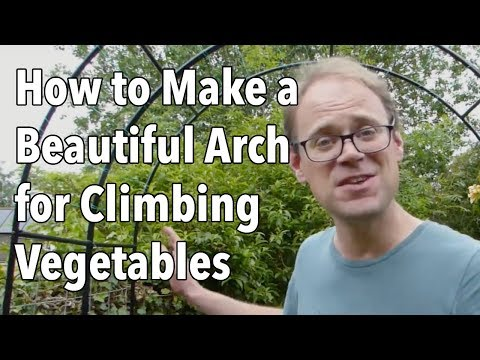 How to Make a Beautiful Arch for Climbing Vegetables
