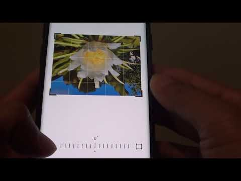 Samsung Galaxy S9: How to Rotate a Picture in Gallery