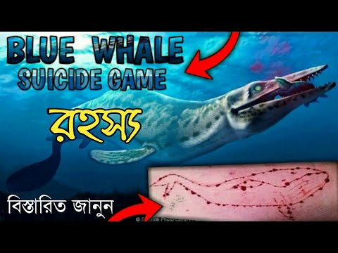 Blue Whale challenge |Warning! Don't play Blue whale game it's suicide game | Today I explain you
