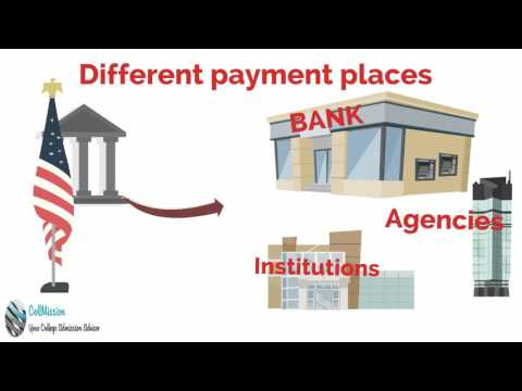 Paying the Visa Application Fee | online visa application