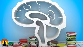 2 Hour Study Music Brain Power Focus Concentrate Study 130