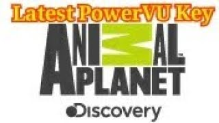 free-animal-planet-biss-key-download Videos - Videos Run Online