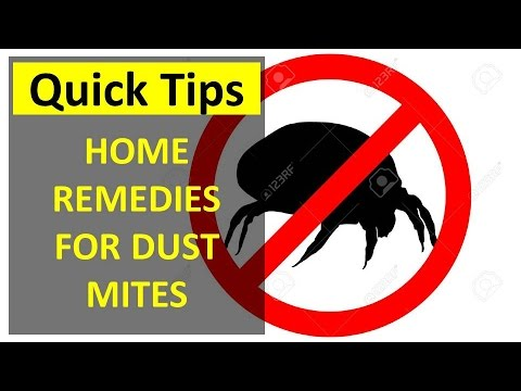 Home Remedies for Dust Mites