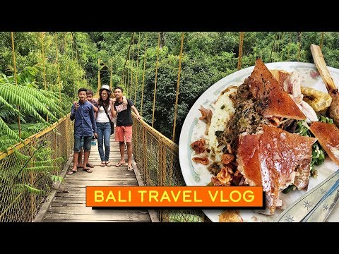 Roasted Suckling Pig in Bali (TRAVEL VLOG)