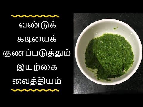 வண்டுக் கடியைக் குணப்படுத்தும் இயற்கை வைத்தியம் - Tamil health tips