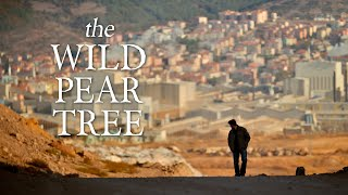 The Wild Pear Tree (official trailer)