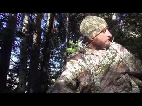 Bowhunting public land elk in Colorado