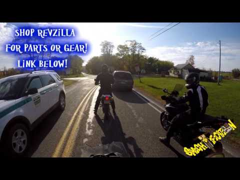 I hit a skunk on my motorcycle! - BMW F800GS