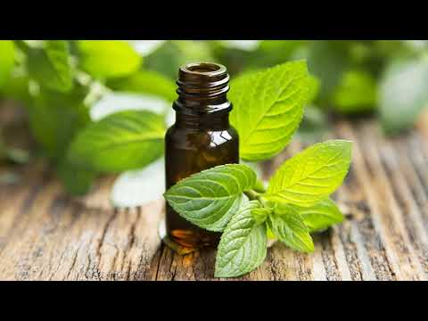 Role Of Clove And Peppermint For Health - Natural Painkillers For Health  How To Use
