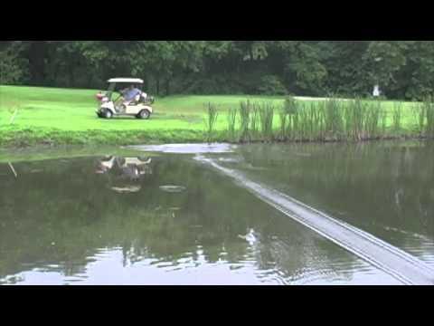 golf ball dragging