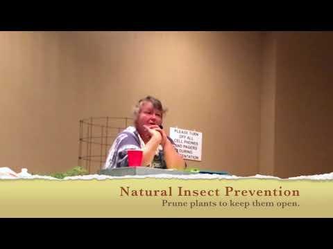 Control & Prevent Harmful Garden Pests Organically | Savvy Organics Farm