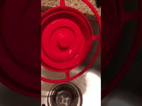 Clean your hummingbird feeders regularly!