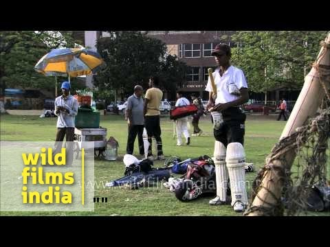 Training session of young cricketers - Kolkata