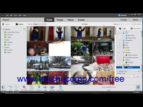 Photoshop Elements 2019 Tutorial Assigning & Managing Tags and Ratings Adobe Training
