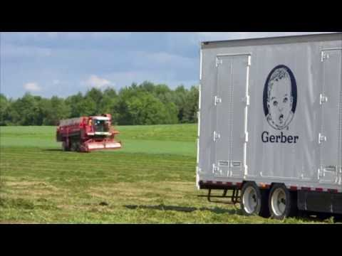 Chapter 1: Get to Know Our Gerber Growers