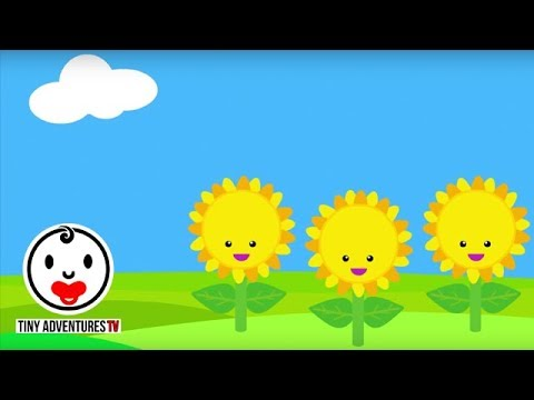 Baby Sensory - Colour Animation (Infant Visual Stimulation) #3
