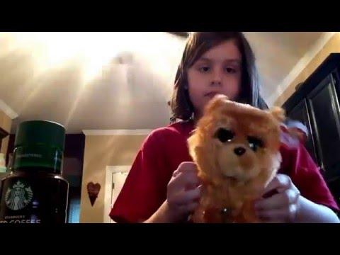 Or dog eats cat poo!!