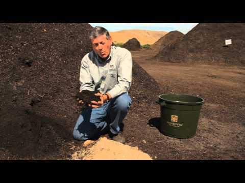 How to Improve Sandy Soils : Garden Savvy