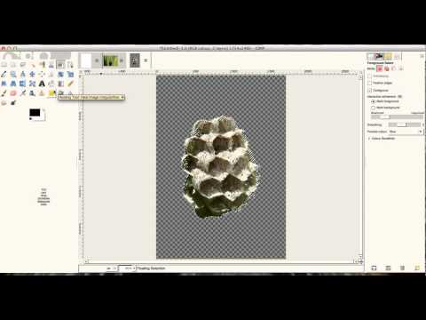 Gimp - Cut, Copy, Paste and Brush!  (video4)