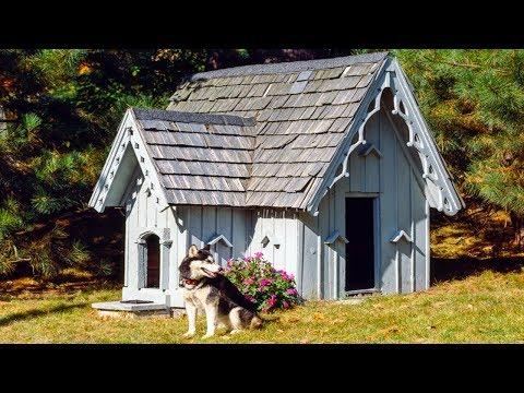 Diy Dog Houses For Winter