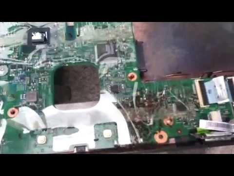 laptop ants colony
