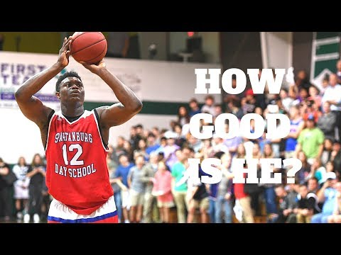How Good Will Zion Williamson Be?