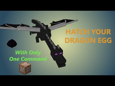 Minecraft | Only One Command | Hatch Your Dragon Egg And Tame It |No mods (1.8.8)