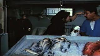 ست واحدة كفيلة تقوُم حرب بين 100 راجل !!! | فيلم شادر السمك
