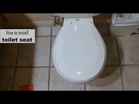 How to install toilet seat DIY video | #diy #toilet