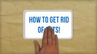 How To Get Rid Of Ants Naturally Best Tips For Getting Rid Of Ants In