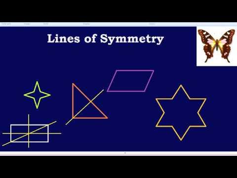 Lines of Symmetry