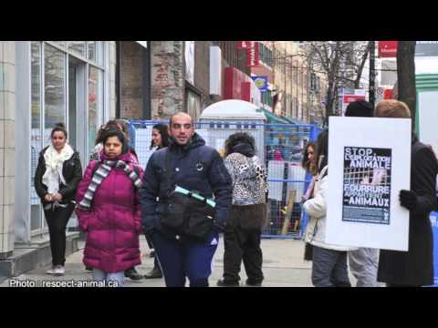 Montreal fur free Saturday on November 24