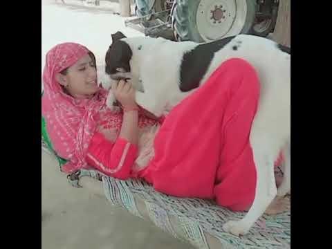 Xxx Mp4 Funn With Dog 3gp Sex