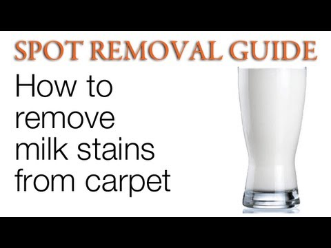 How to Clean Milk out of Carpet | Spot Removal Guide
