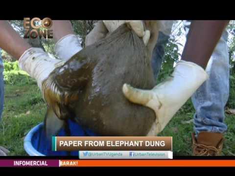 Ecozone[1/2]: Making Paper From Elephant Dung